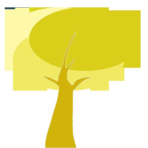 corsi-bologna troncogiallo